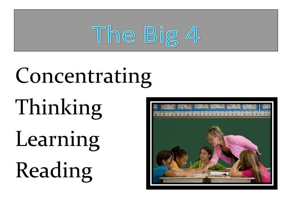 Concentrating Thinking Learning Reading