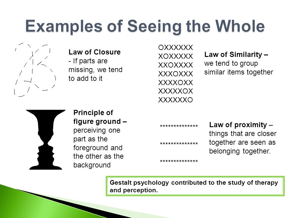 Examples of Seeing the Whole