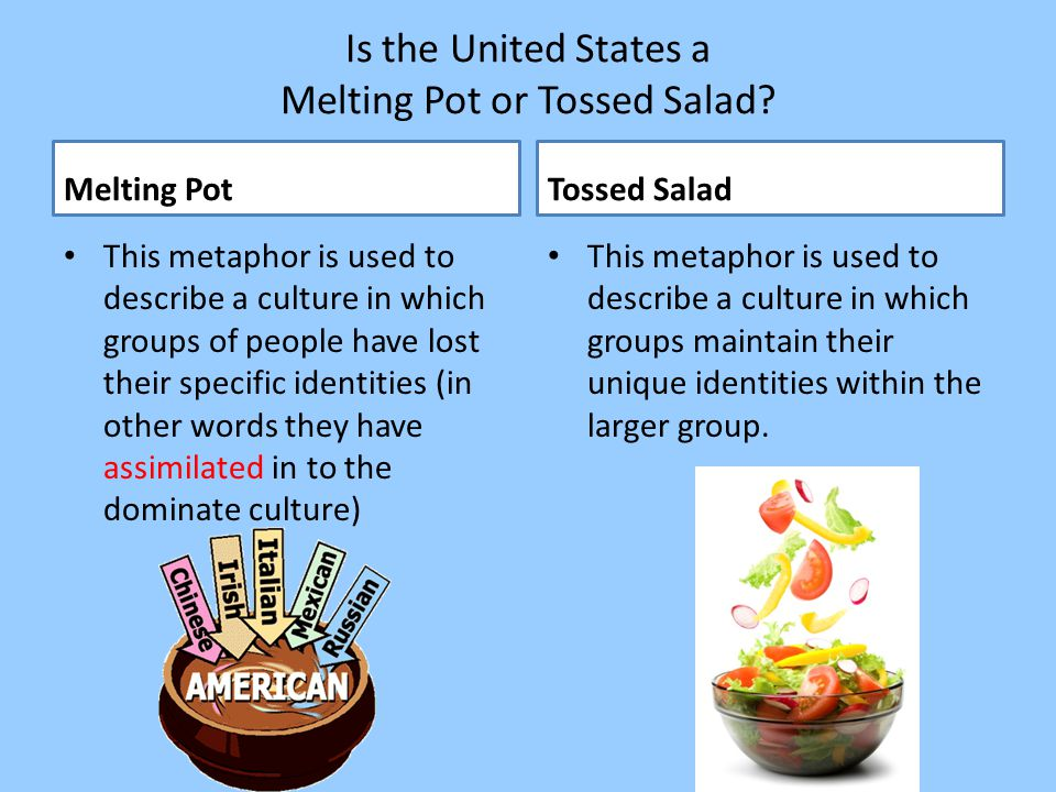 Is the United States a Melting Pot or Tossed Salad