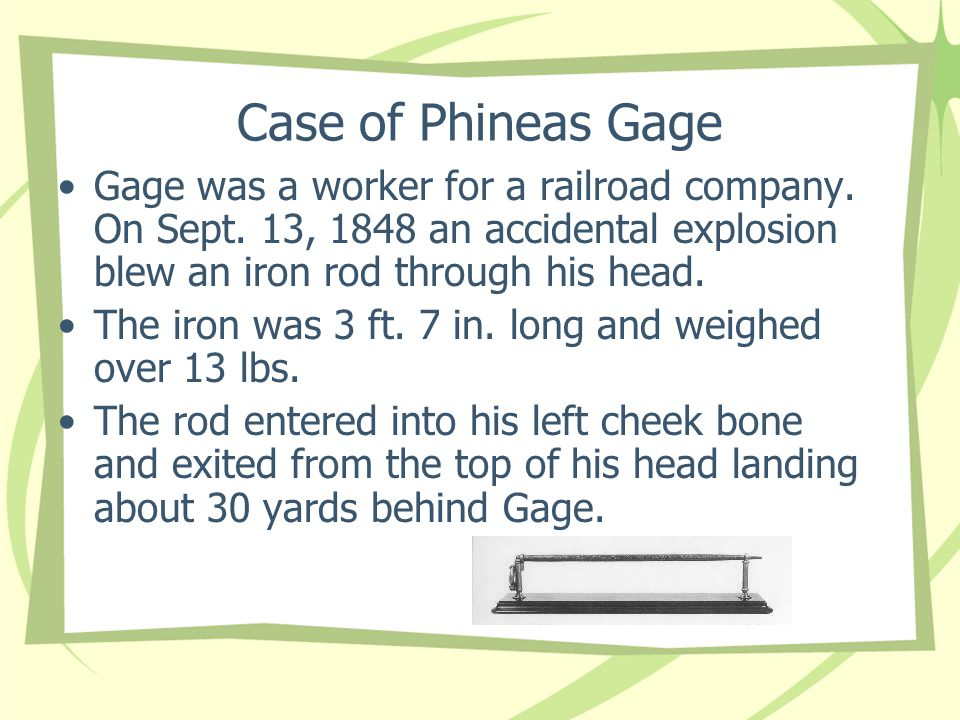 Case of Phineas Gage Gage was a worker for a railroad company. On Sept. 13, 1848 an accidental explosion blew an iron rod through his head.