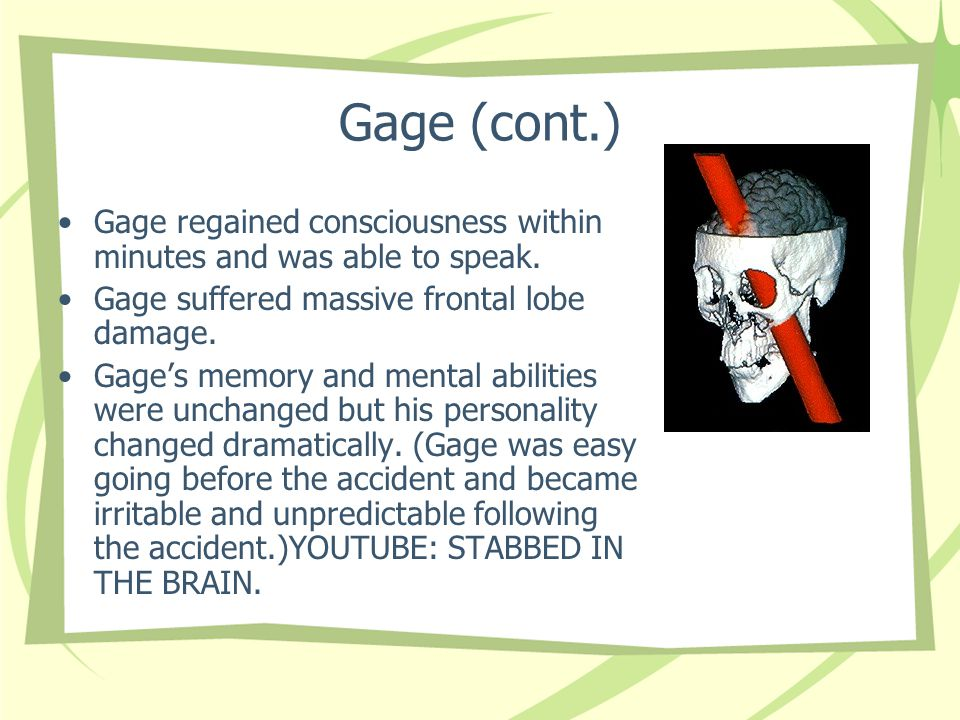 Gage (cont.) Gage regained consciousness within minutes and was able to speak. Gage suffered massive frontal lobe damage.