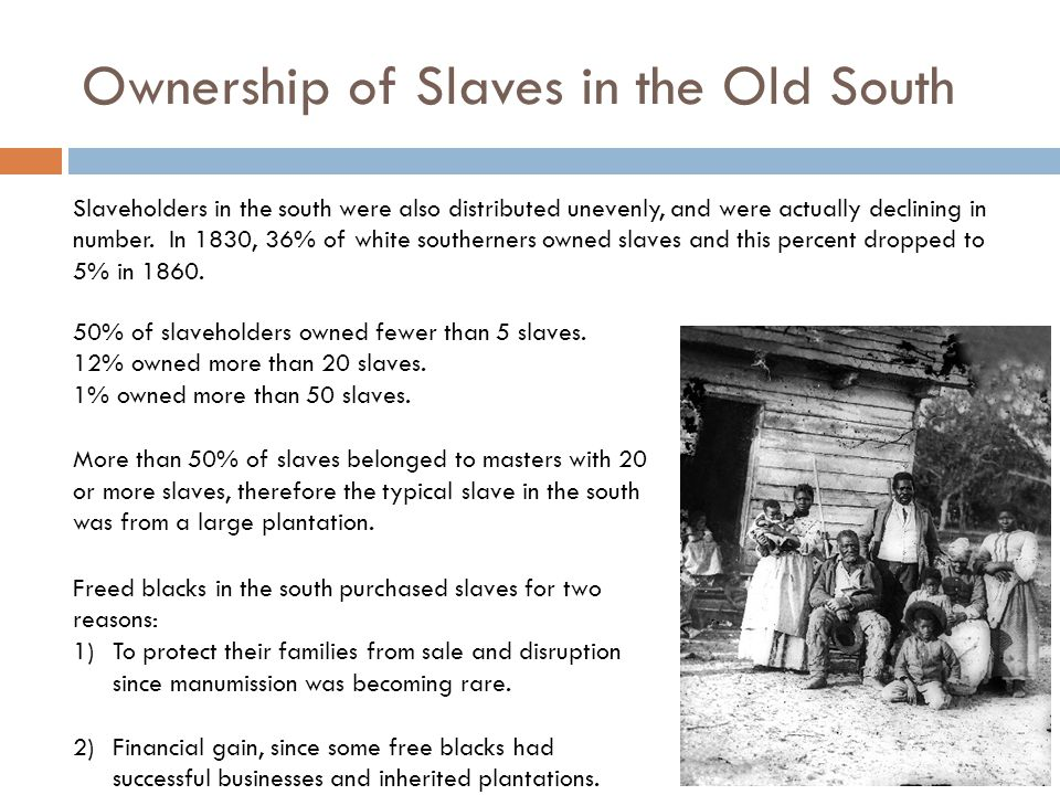Ownership of Slaves in the Old South