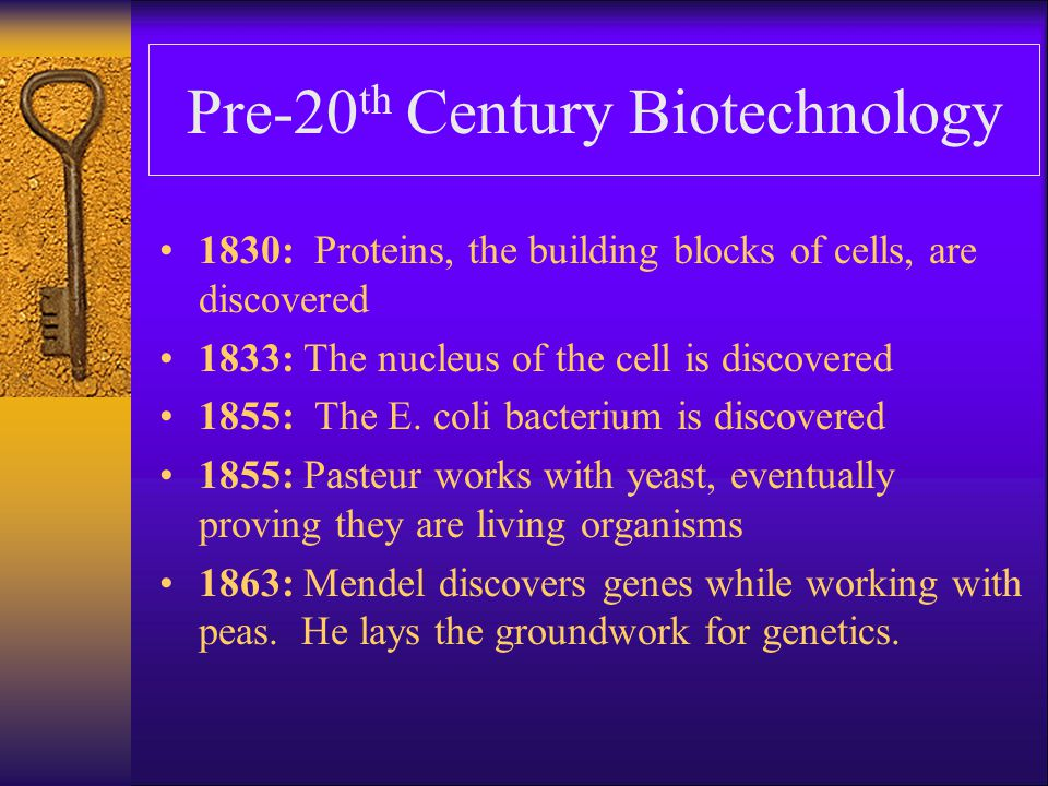 Pre-20th Century Biotechnology