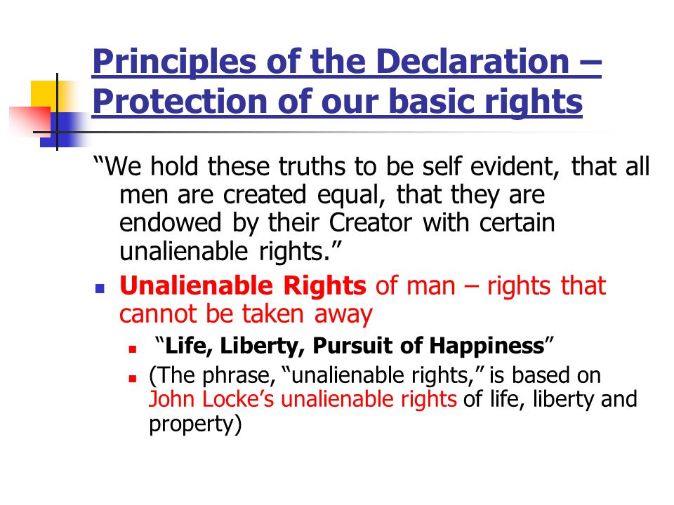 Principles of the Declaration – Protection of our basic rights