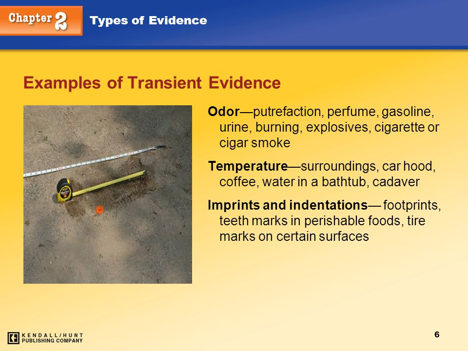 Examples of Transient Evidence