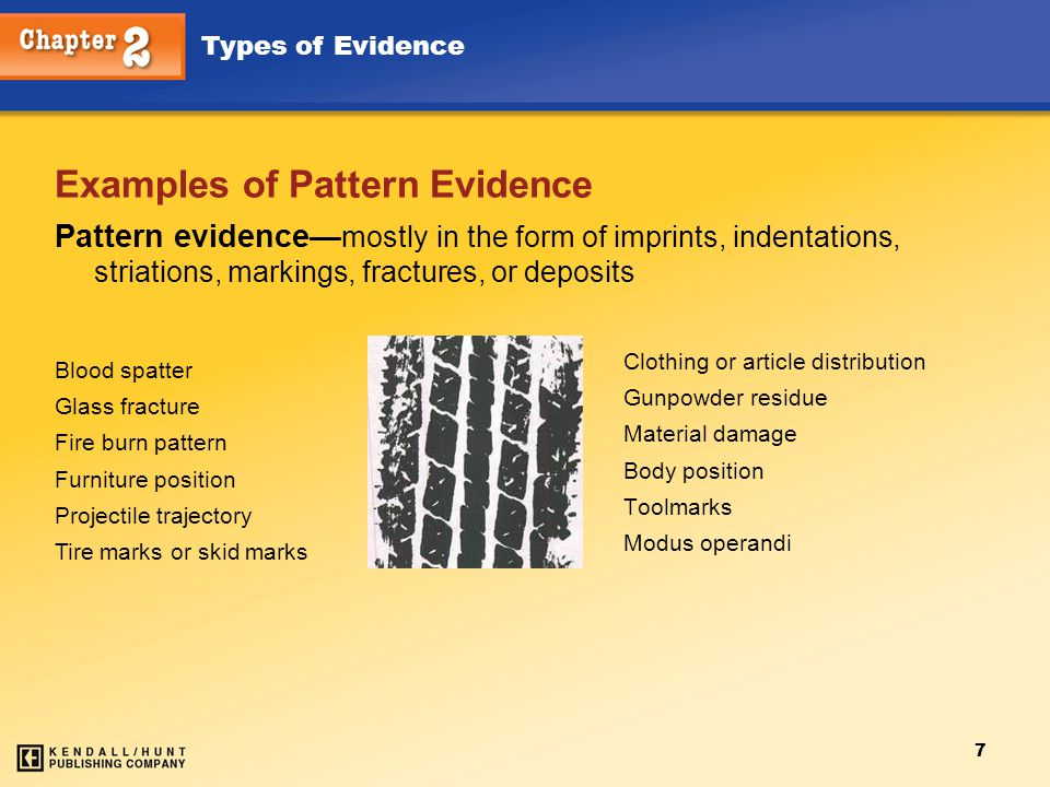 Examples of Pattern Evidence