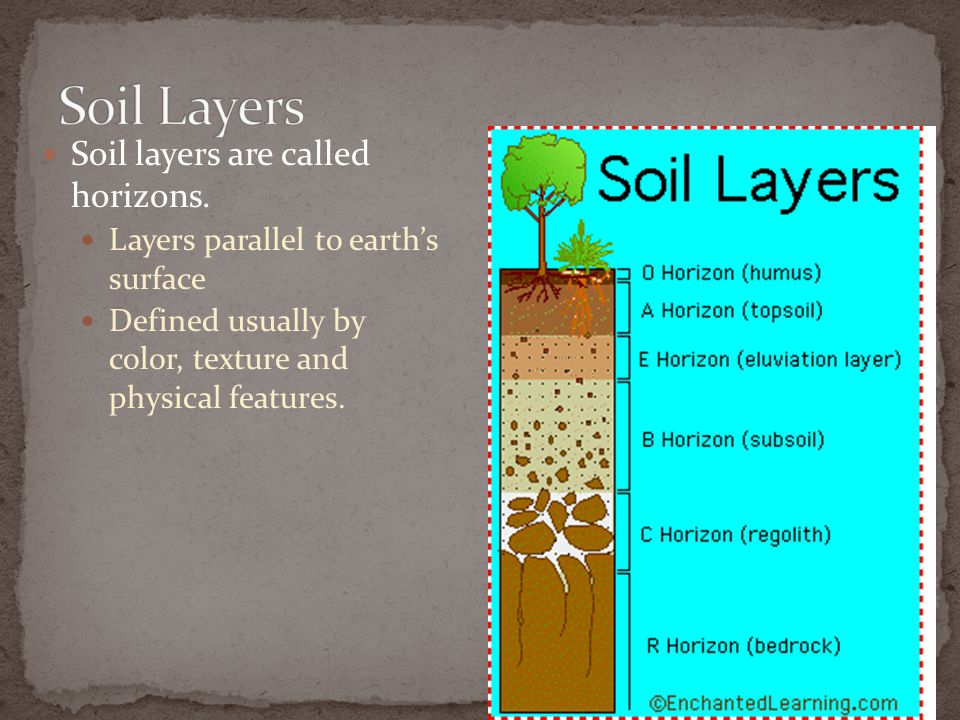 Soil Layers Soil layers are called horizons.