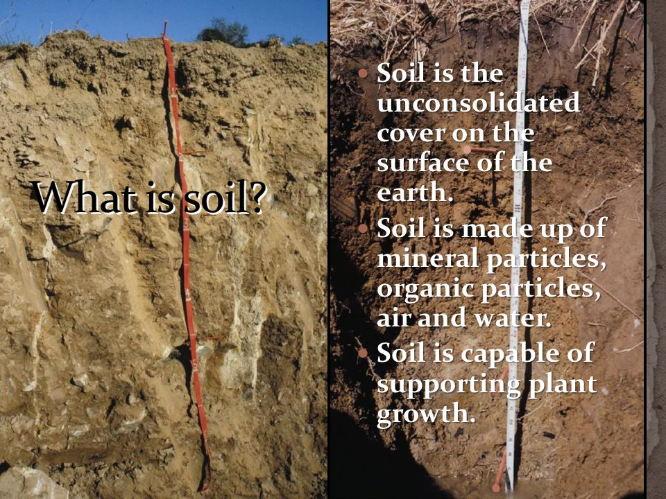 Soil is the unconsolidated cover on the surface of the earth.