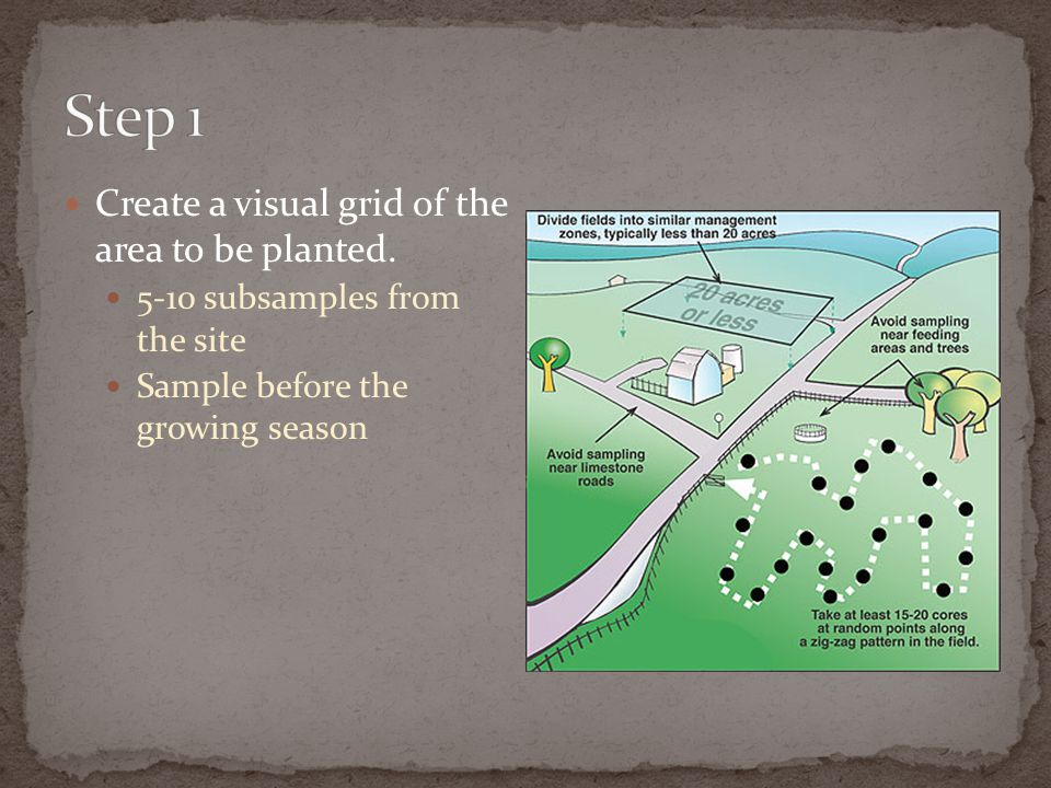 Step 1 Create a visual grid of the area to be planted.
