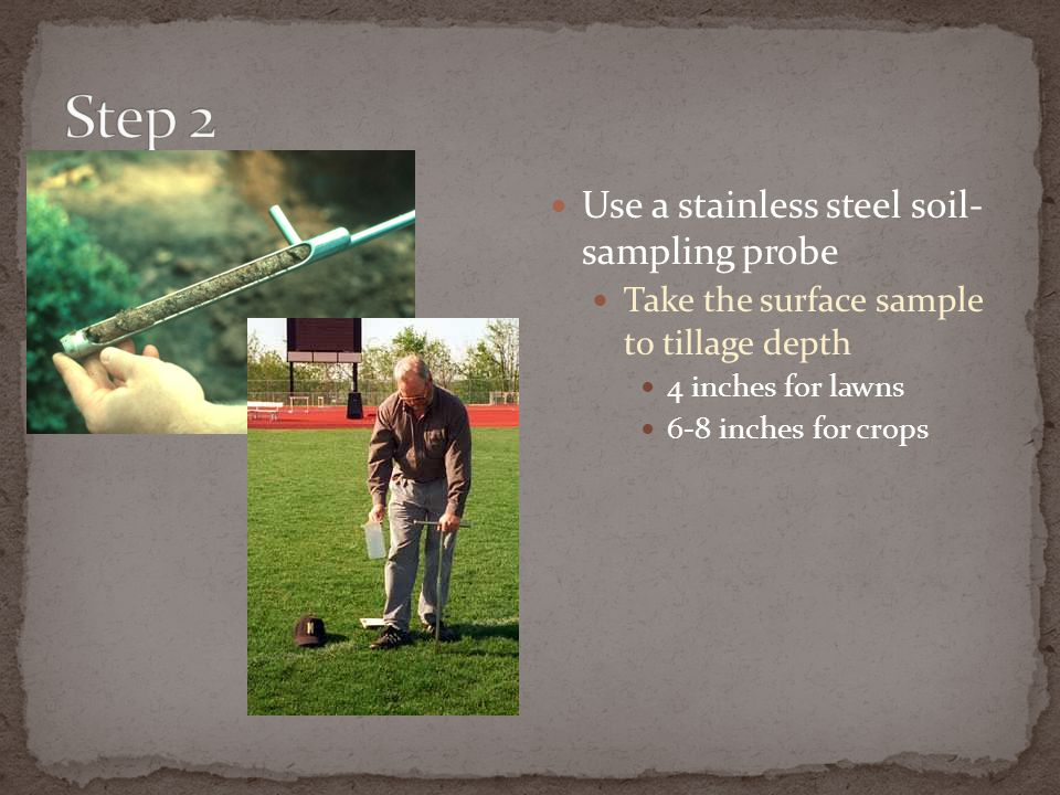 Step 2 Use a stainless steel soil- sampling probe