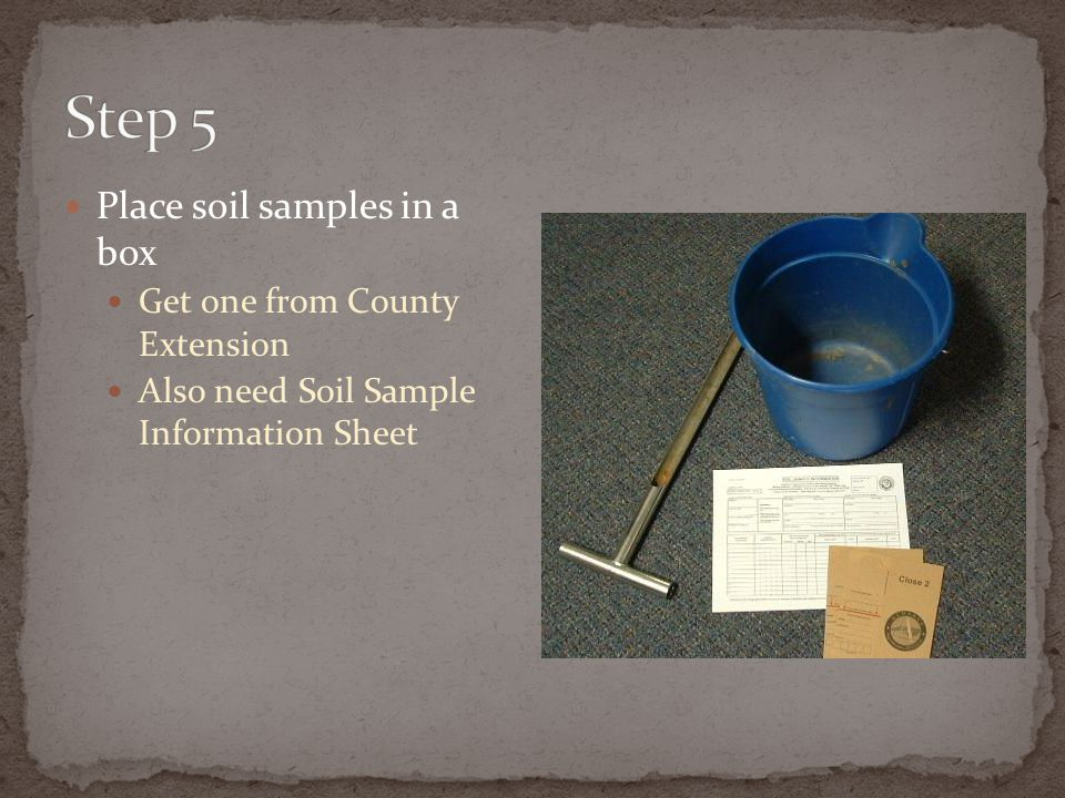 Step 5 Place soil samples in a box Get one from County Extension