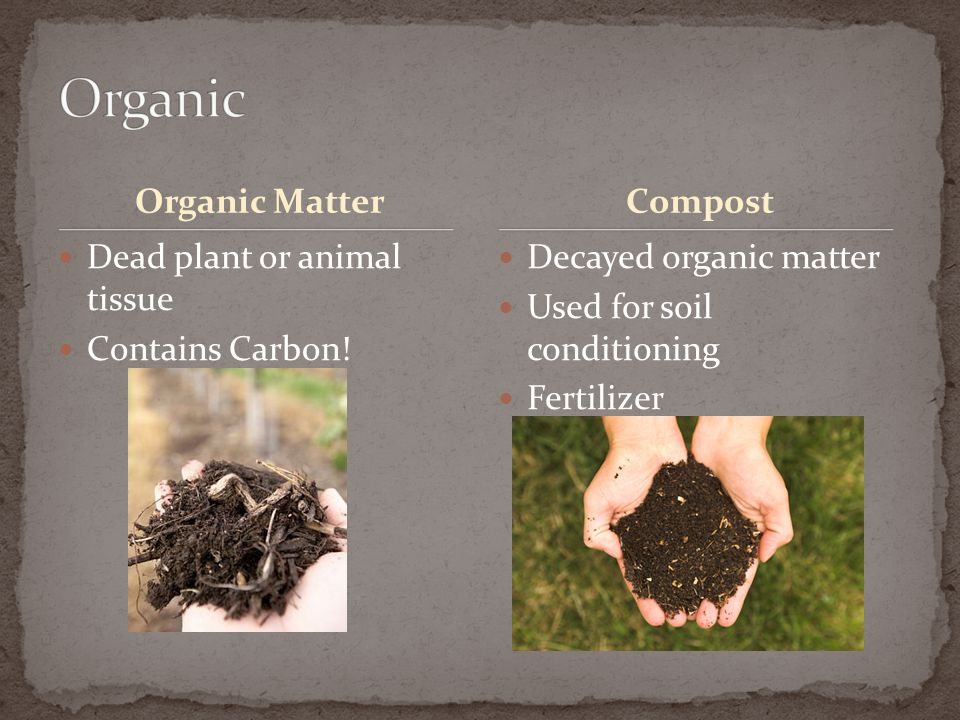 Organic Organic Matter Compost Dead plant or animal tissue