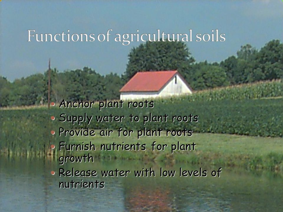 Functions of agricultural soils