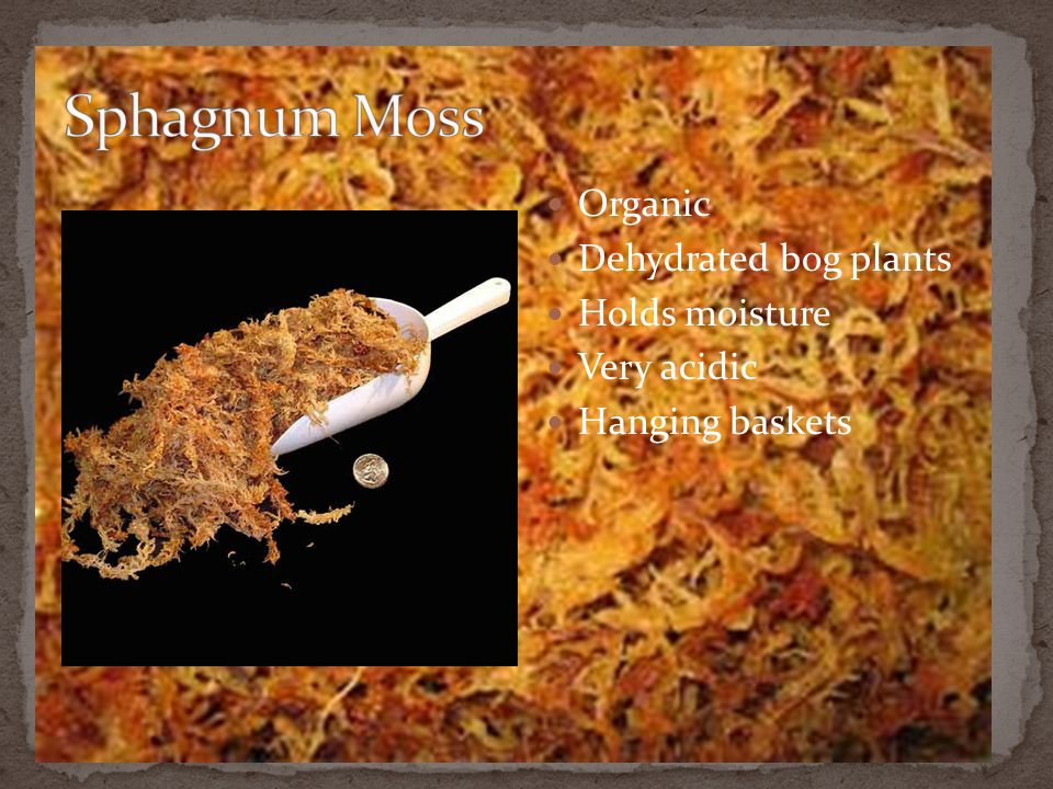 Sphagnum Moss Organic Dehydrated bog plants Holds moisture Very acidic