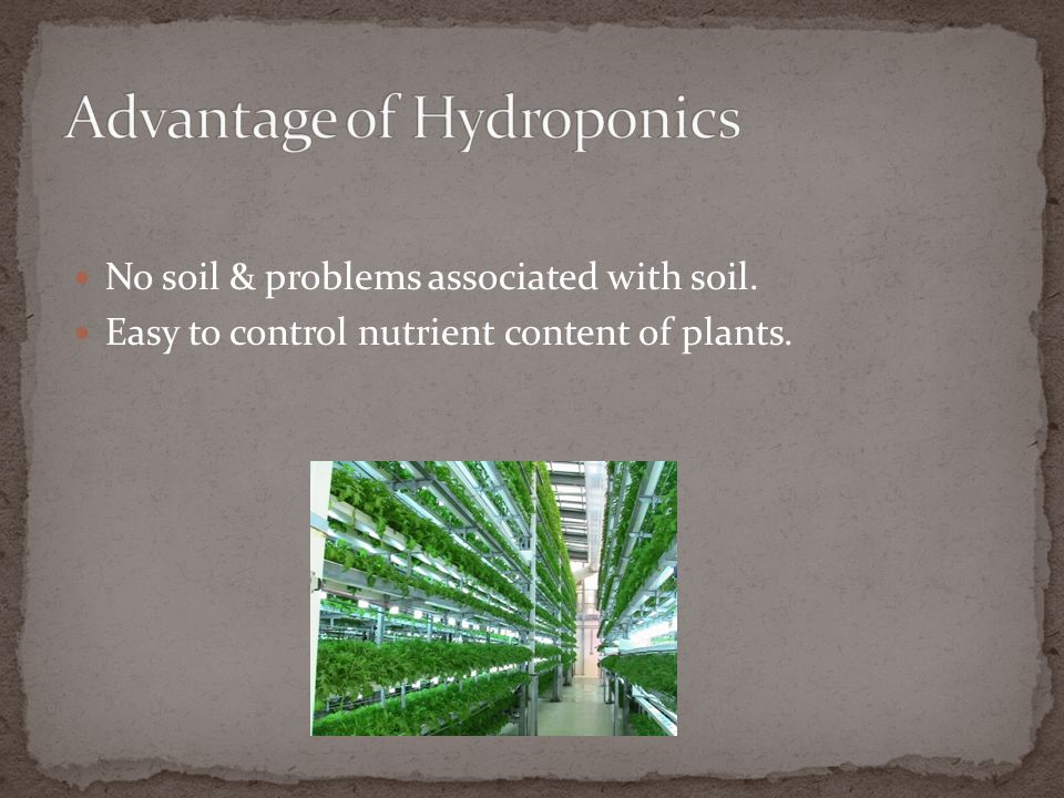 Advantage of Hydroponics