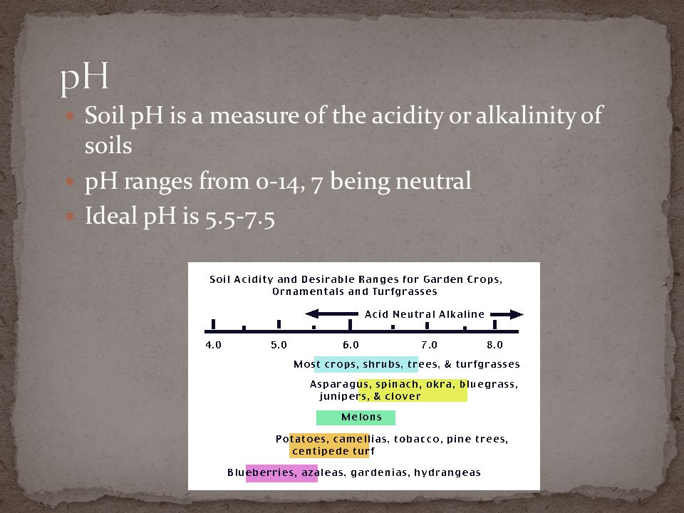pH Soil pH is a measure of the acidity or alkalinity of soils