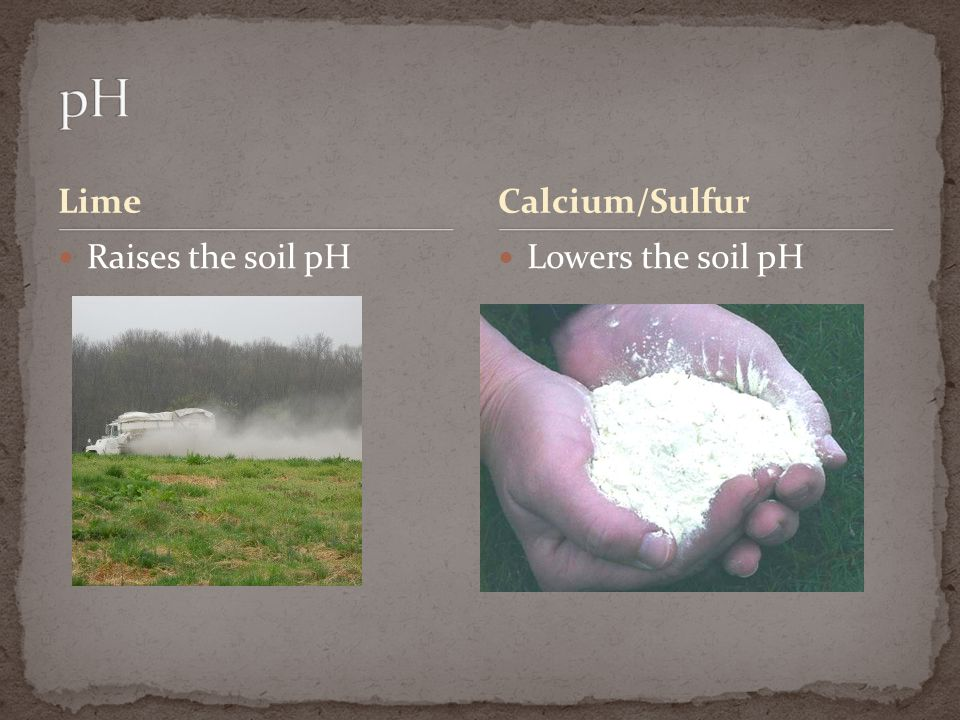 pH Lime Calcium/Sulfur Raises the soil pH Lowers the soil pH
