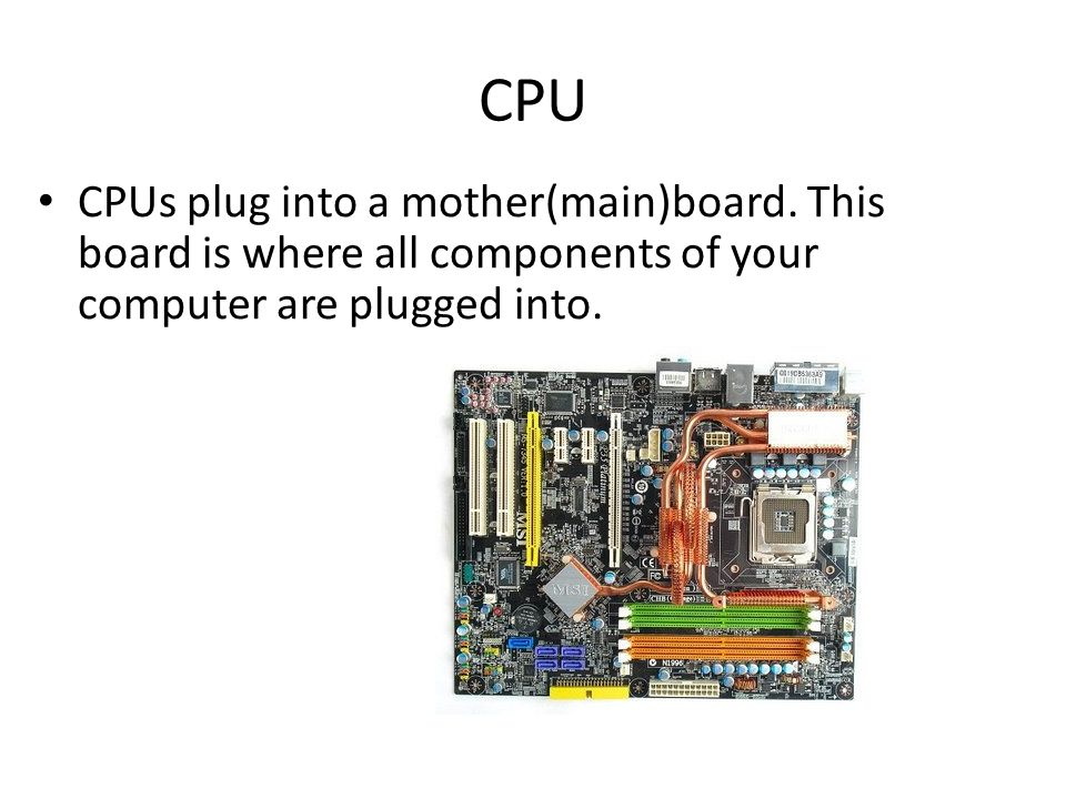 CPU CPUs plug into a mother(main)board.