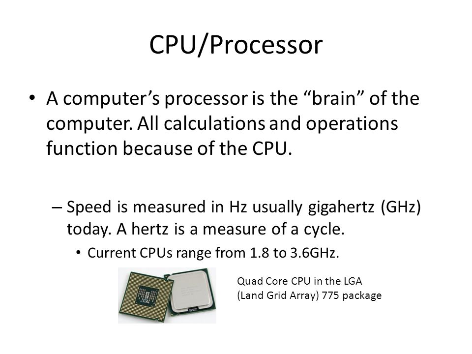 CPU/Processor A computer's processor is the brain of the computer. All calculations and operations function because of the CPU.