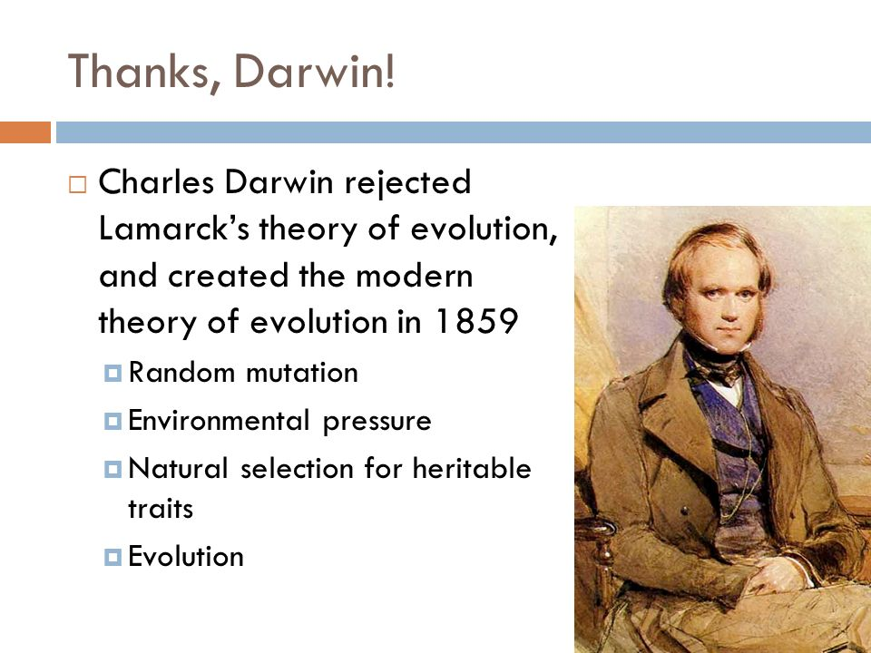 Thanks, Darwin! Charles Darwin rejected Lamarck's theory of evolution, and created the modern theory of evolution in