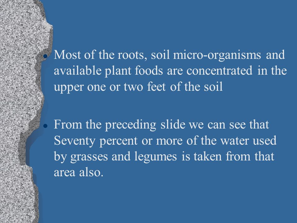 Most of the roots, soil micro-organisms and available plant foods are concentrated in the upper one or two feet of the soil