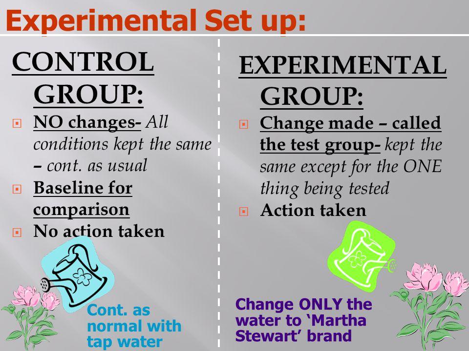 Experimental Set up: CONTROL GROUP: EXPERIMENTAL GROUP: