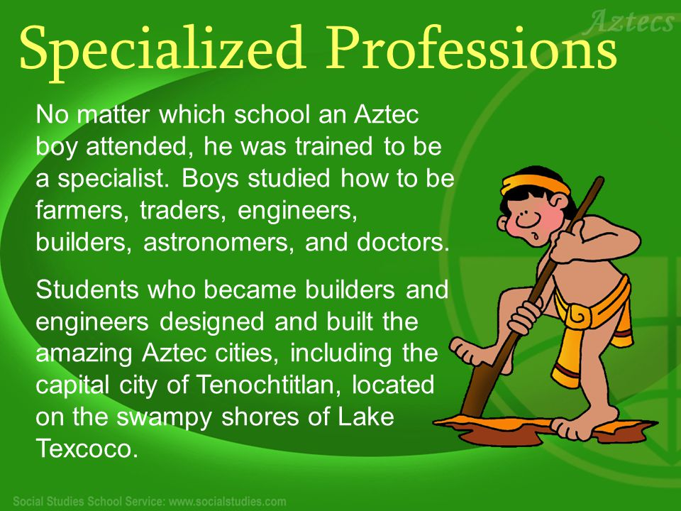 Specialized Professions