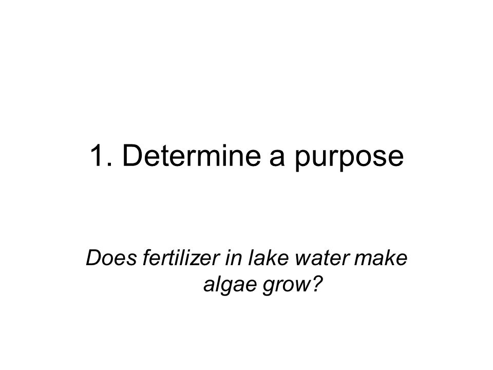 Does fertilizer in lake water make algae grow