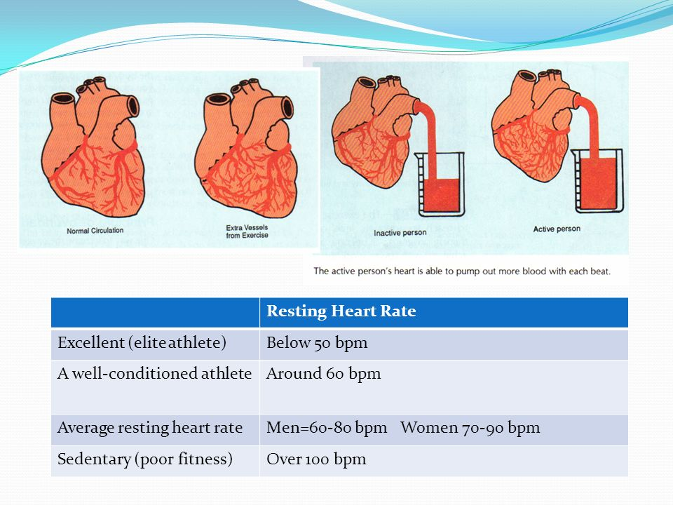 Your Heart is a Pump Resting Heart Rate Excellent (elite athlete)