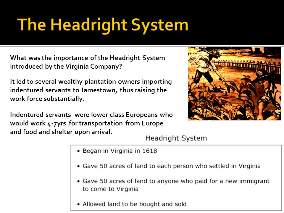 The Headright System What was the importance of the Headright System introduced by the Virginia Company