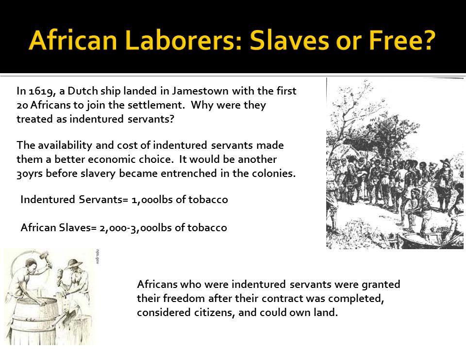 African Laborers: Slaves or Free