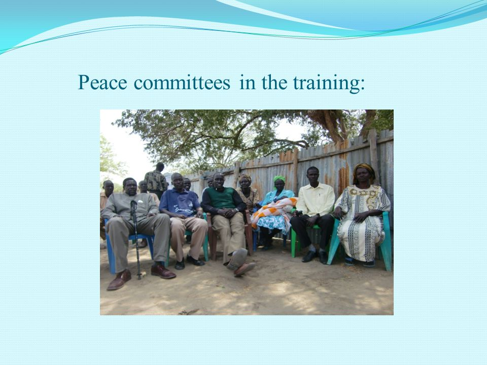 Peace committees in the training: