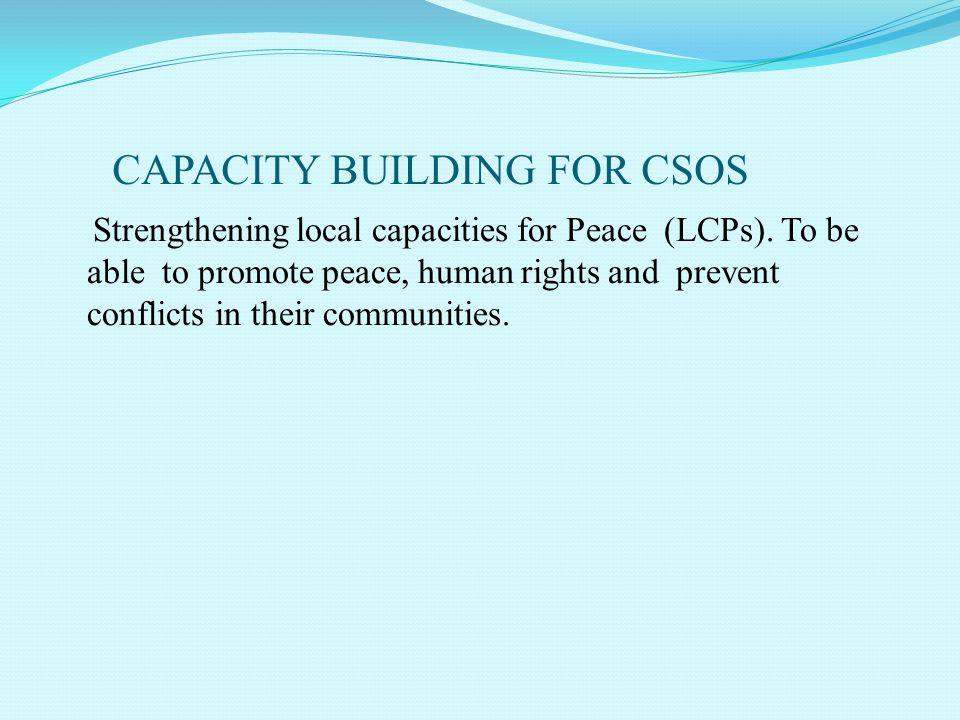 CAPACITY BUILDING FOR CSOS