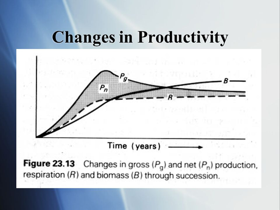 Changes in Productivity