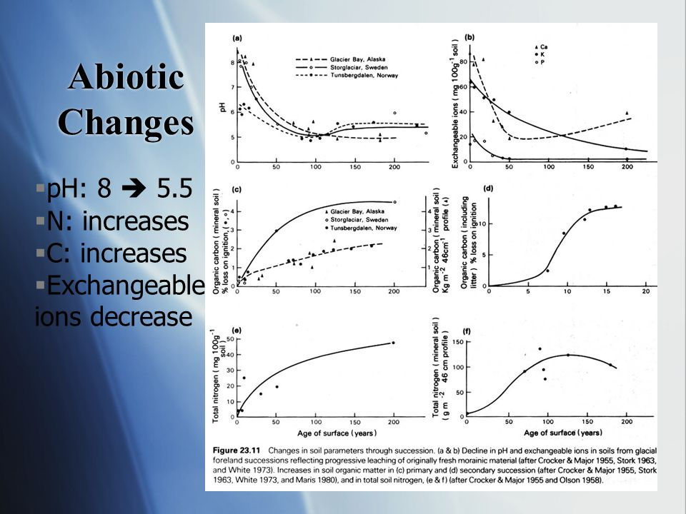 Abiotic Changes pH: 8  5.5 N: increases C: increases