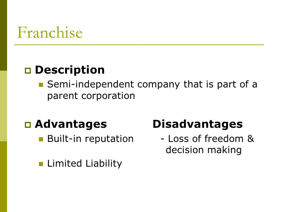 Franchise Description Advantages Disadvantages