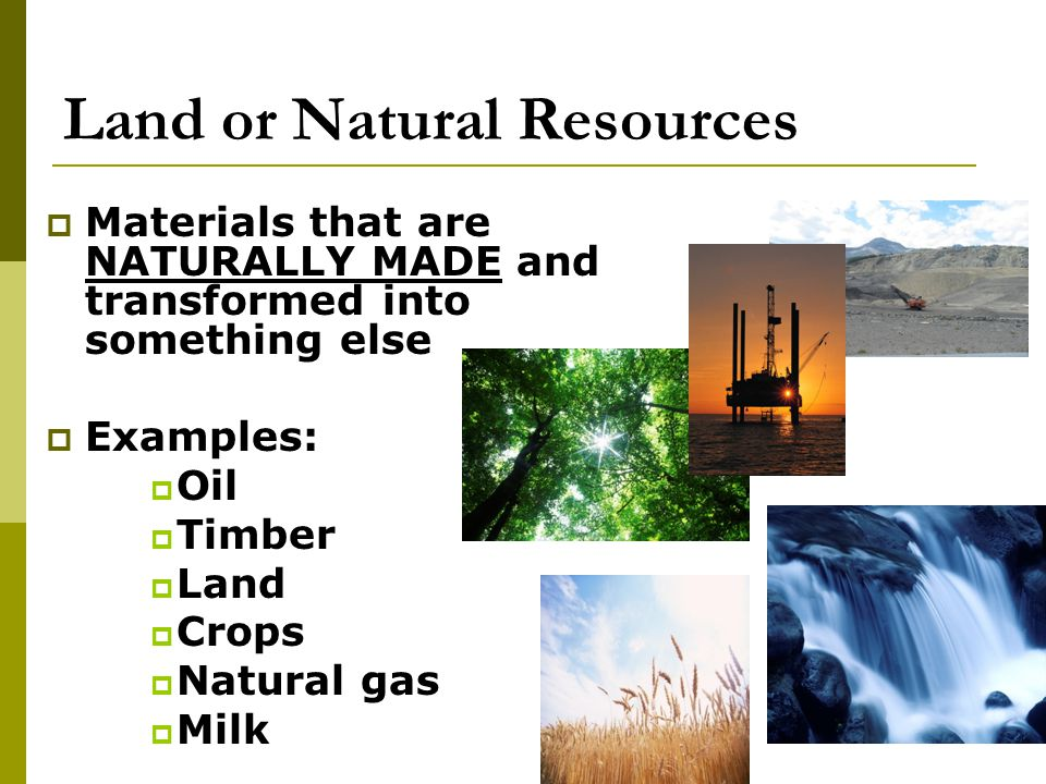 Land or Natural Resources