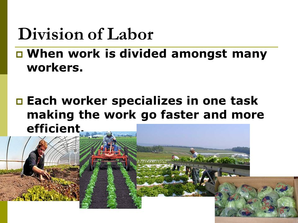 Division of Labor When work is divided amongst many workers.