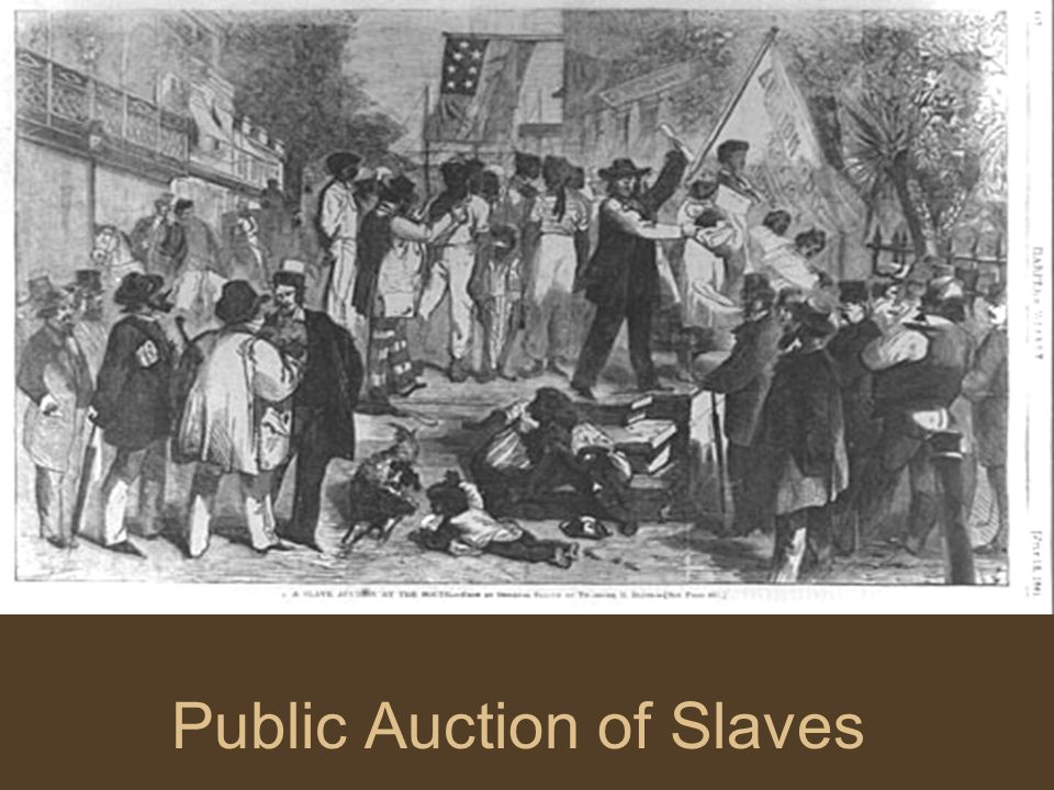 Public Auction of Slaves