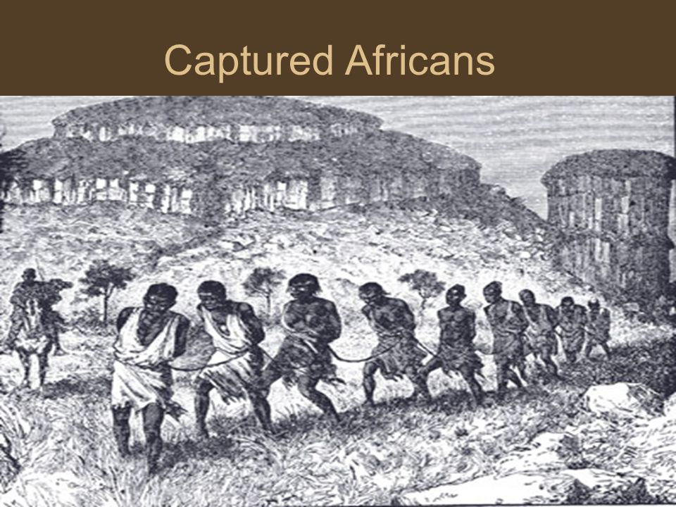 Captured Africans Coffle – a chained line of captured Africans or slaves