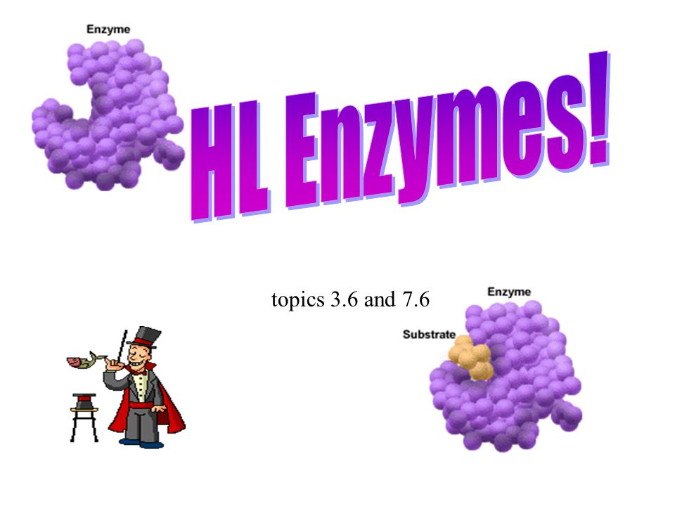 HL Enzymes! topics 3.6 and 7.6