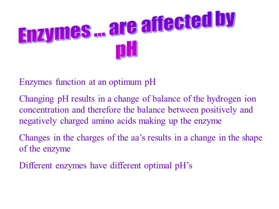 Enzymes ... are affected by