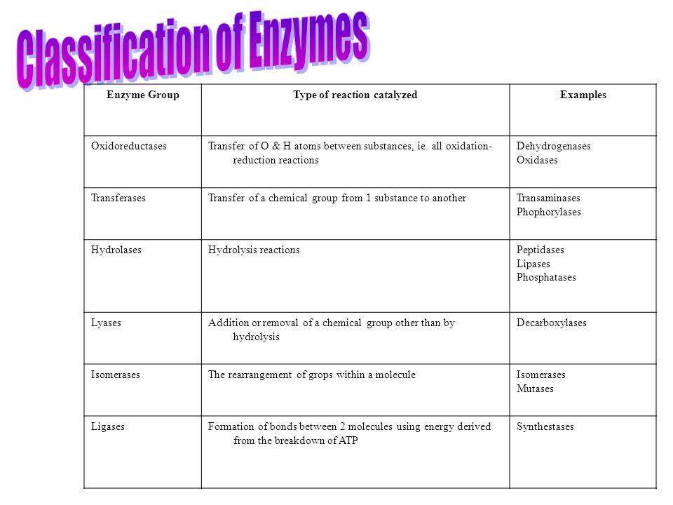 Type of reaction catalyzed