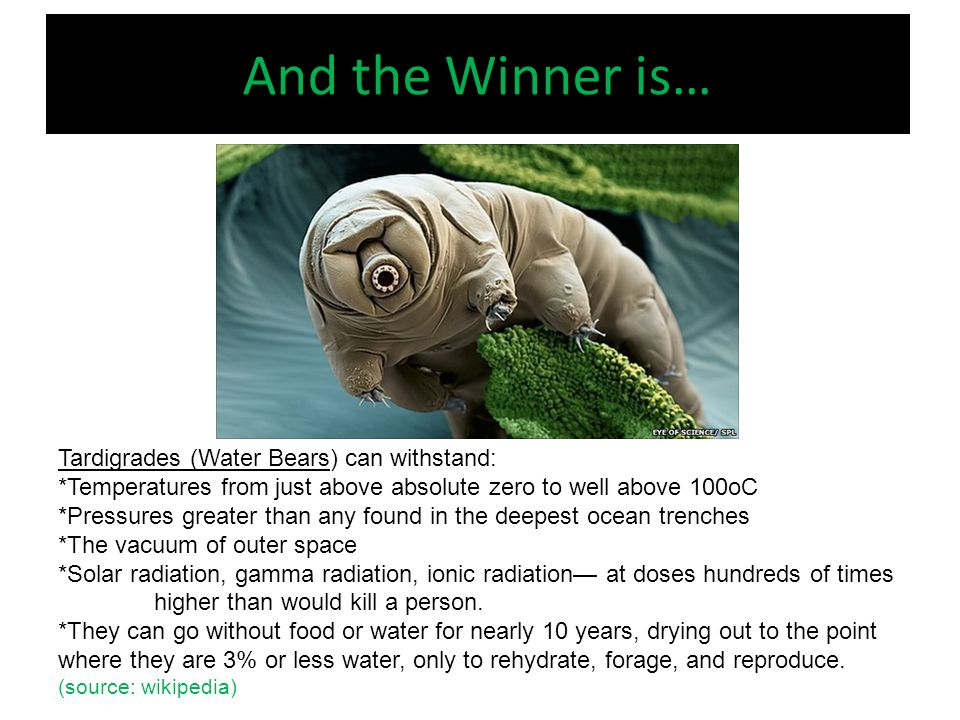And the Winner is… Tardigrades (Water Bears) can withstand: