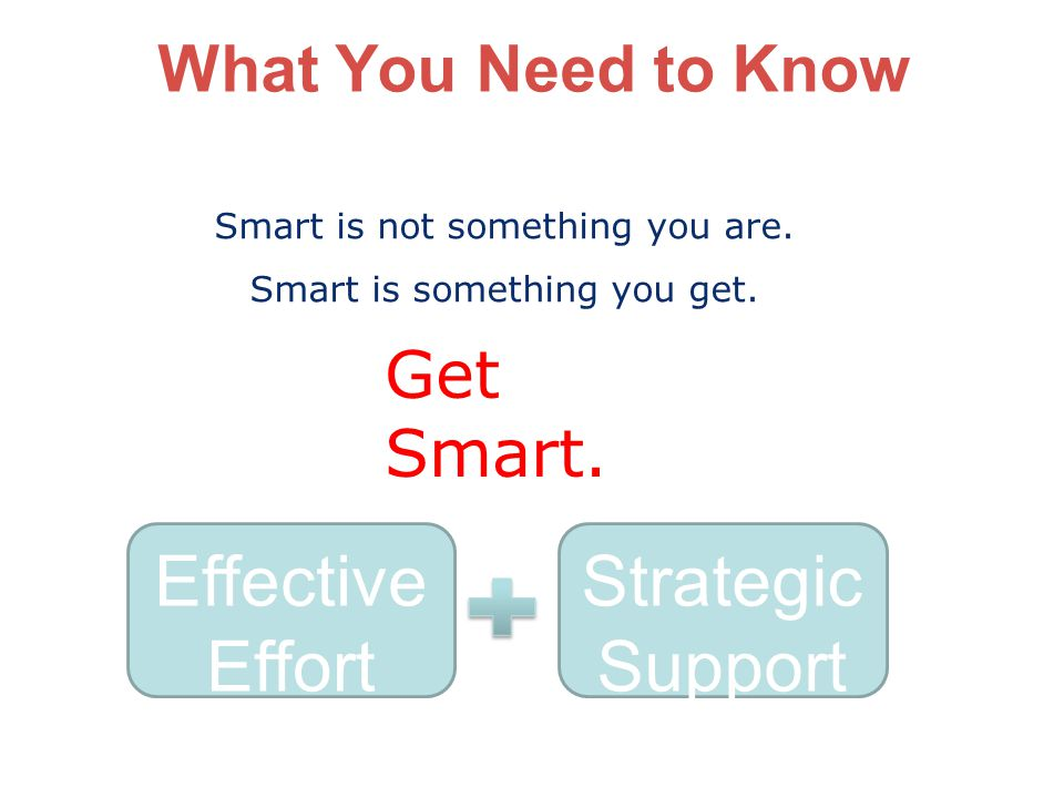 Effective Effort Strategic Support What You Need to Know Get Smart.