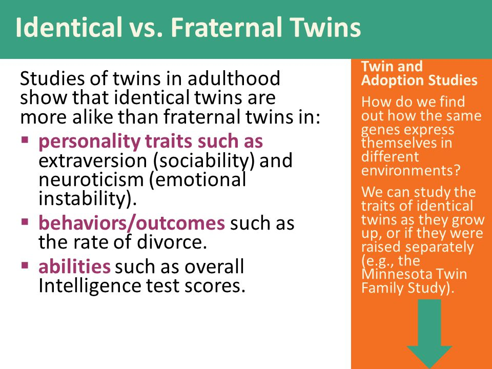 Identical vs. Fraternal Twins