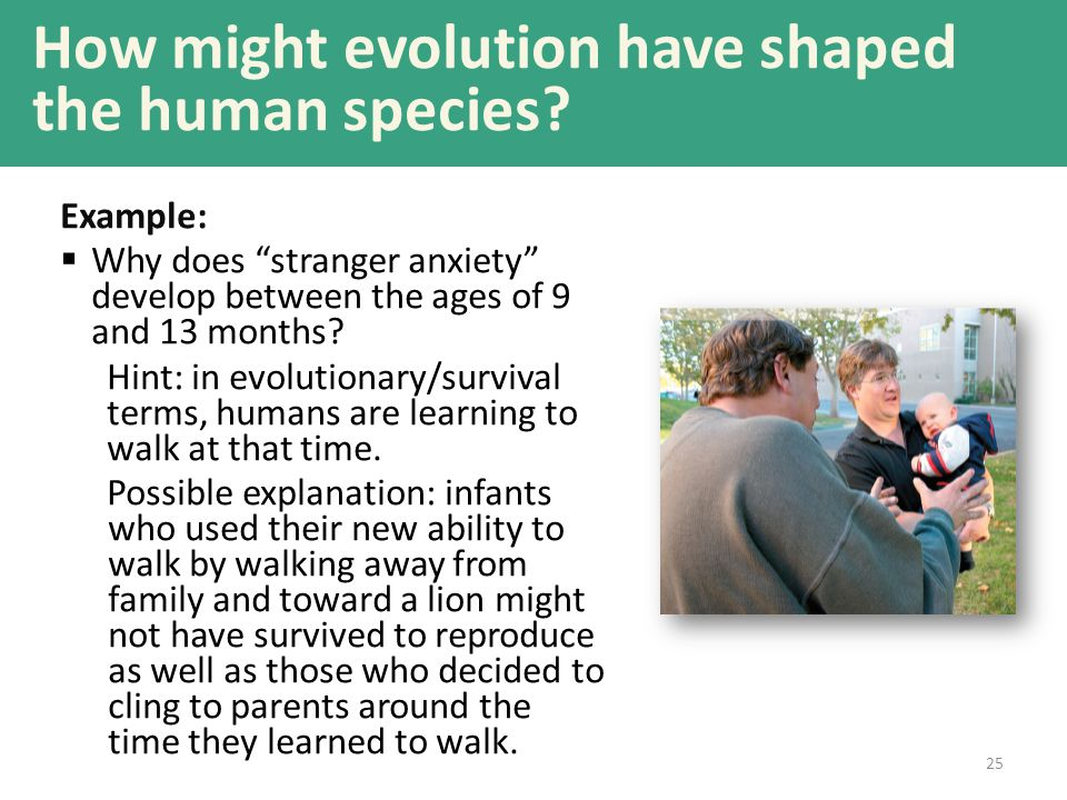How might evolution have shaped the human species