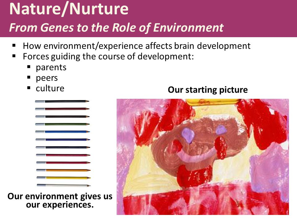 Nature/Nurture From Genes to the Role of Environment