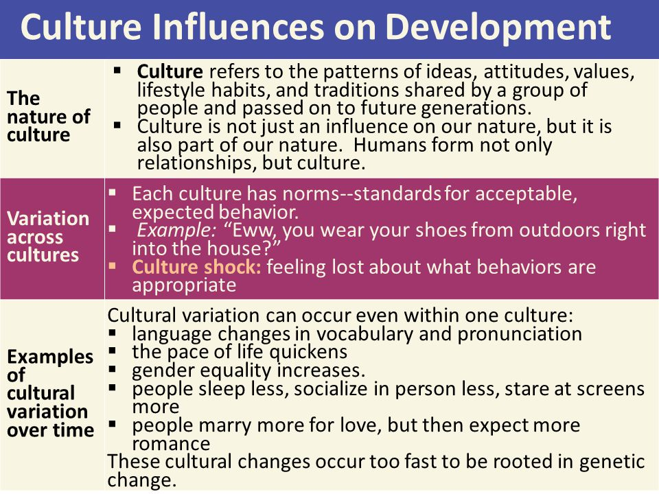 Culture Influences on Development