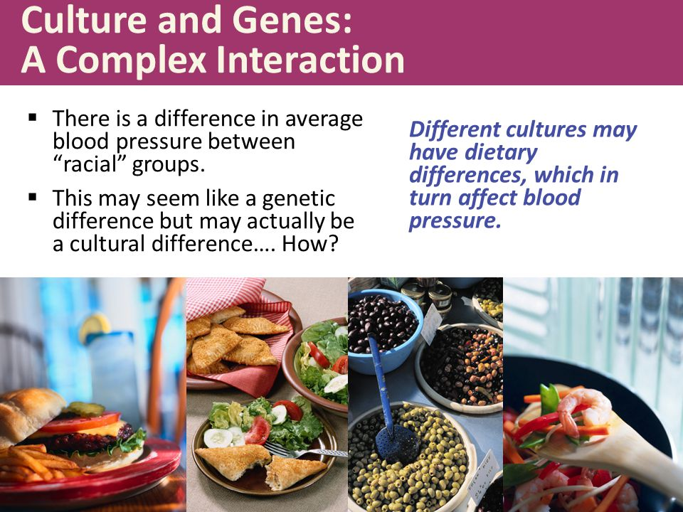 Culture and Genes: A Complex Interaction